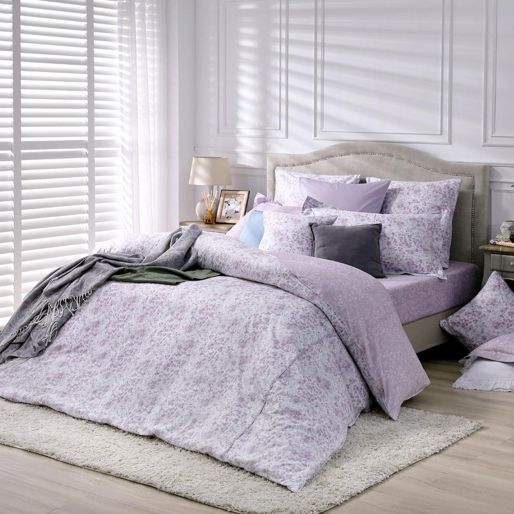 BBL Premium 蜜香暖境100%精梳棉.印花特大兩用被四件式床包組