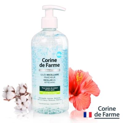 法國黎之芙 淨妍高效保濕潔膚凝膠500ml