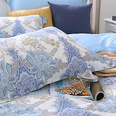 鴻宇 歐式壓框薄枕套2入 天絲300織 柏拉圖 台灣製