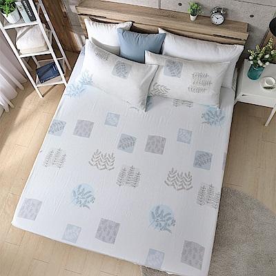 岱思夢 單人100%天絲床包枕套二件組 云野