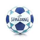 SPALDING Team 足球 #5 白丈青綠
