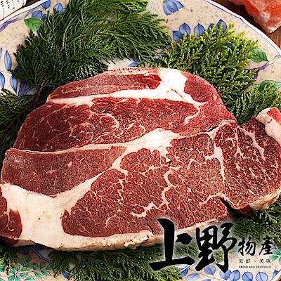 【上野物產】美國安格斯比臉大雪花沙朗牛 x30片組(450g土10%/片)