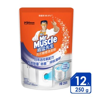 威猛先生 洗衣機槽清潔劑 250gx12入/箱