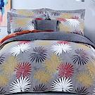 澳洲Simple Living 加大長纖細棉兩用被床包組-璀璨時光(台灣製)