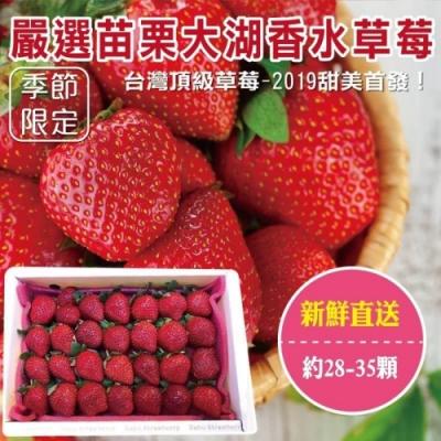 買2送2【天天果園】嚴選苗栗大湖香水草莓28-35顆 共4盒(每盒約400g)