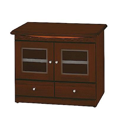 綠活居 莫莉時尚2.9尺木紋二門電視櫃/視聽櫃-87x45x72cm-免組