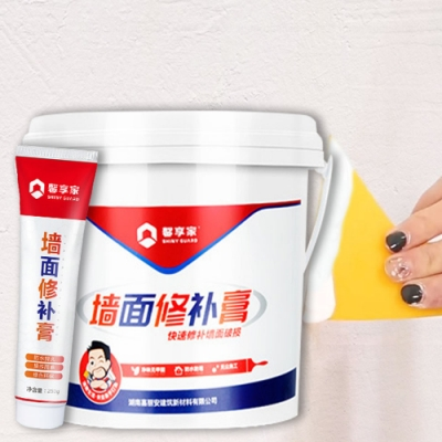 高效防霉防水牆壁修補膏 250g 二入組(附工具)