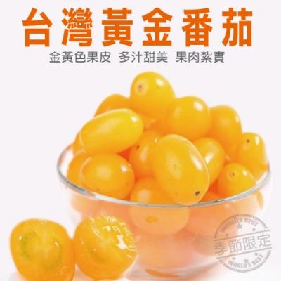 【天天果園】台灣黃金蕃茄10斤