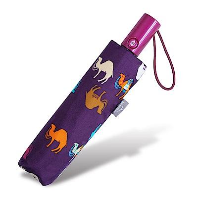 RAINSTORY 彩色駱駝 抗UV加大自動傘-紫