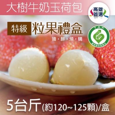 家購網嚴選 大樹牛奶玉荷包特級粒果禮盒5斤(120~125顆/盒)