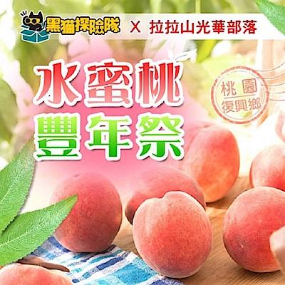 光華部落 水蜜桃(12粒/2斤8兩/盒)(2盒)