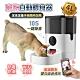 【FJ】高清遠端觀看寵物自動餵食器PW3(連接WIFI可觀看) product thumbnail 2