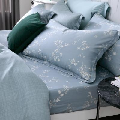 OLIVIA   Dora  特大雙人床包歐式枕套三件組 300織天絲TM萊賽爾 台灣製