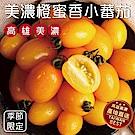買2送2【天天果園】橙蜜香小蕃茄 共4台斤