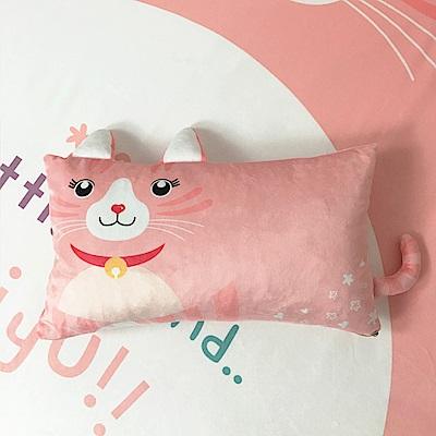 HUEI生活提案 水晶絨 可拆洗動物造型造型枕 粉粉貓