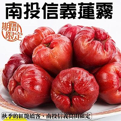 【天天果園】LV等級 南投信義鄉蓮霧原盒裝 x2kg (11-12入)