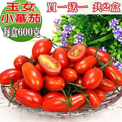愛蜜果 買一送一 溫室玉女小蕃茄(600克/盒) 共2盒