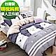 9 Design 奇爾大熊 單人三件組 100%精梳棉 台灣製 床包被套純棉三件式 product thumbnail 1