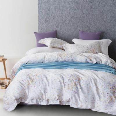Ania Casa 去野外 天絲 100% TENCEL 雙人鋪棉兩用被套床包四件組
