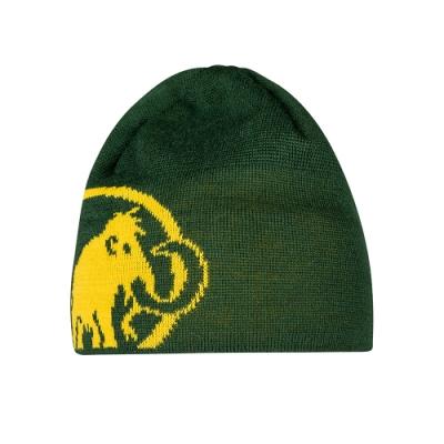 【Mammut 長毛象】Tweak Beanie 保暖針織LOGO羊毛帽 綠樹林/黃鳶尾 #1191-01352