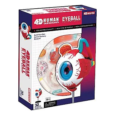 4D MASTER 立體拼組模型人體解剖教學系列-眼球