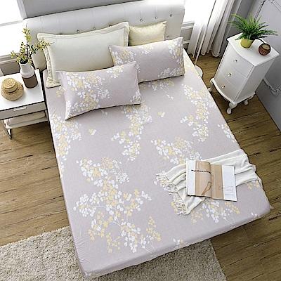 岱思夢 加大100%天絲床包枕套三件組 樹柯