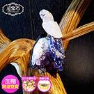 A1寶石  頂級粉水晶鳥-紫水晶鎮/同聚寶盆發財樹水晶洞功效