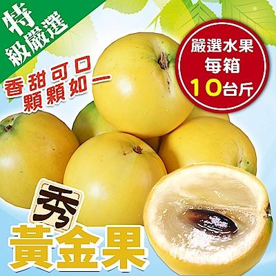 【天天果園】台灣嚴選黃金果 x10台斤