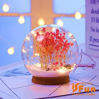 iSFun 夢幻水晶球 聖誕雪花情境玻璃球燈 粉乾燥花