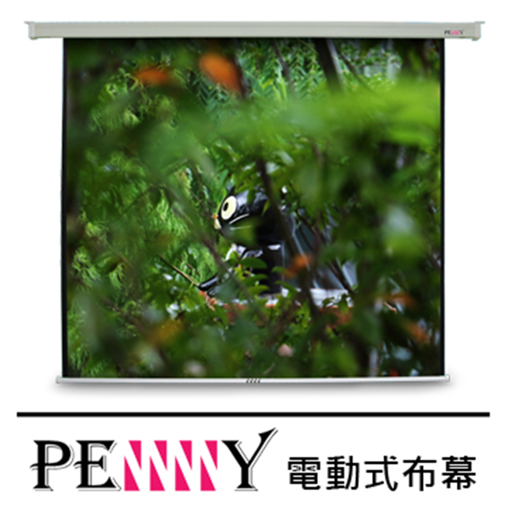 PENNY電動布幕 PS-120(1:1)