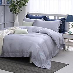 LASOL睡眠屋-100%奧地利天絲 單人兩用被床包三件組清晨微光