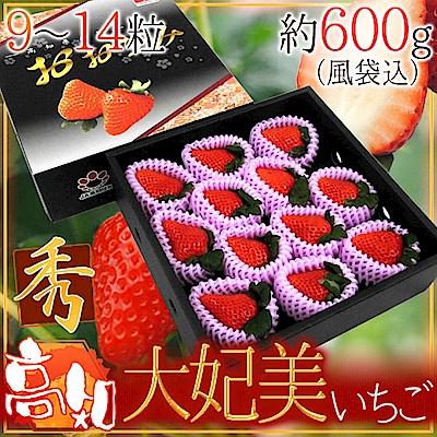 【天天果園】日本高知縣大妃美草莓原裝禮盒500g(9-15顆)