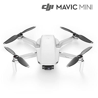 DJI Mavic Mini空拍機 單機版-公司貨
