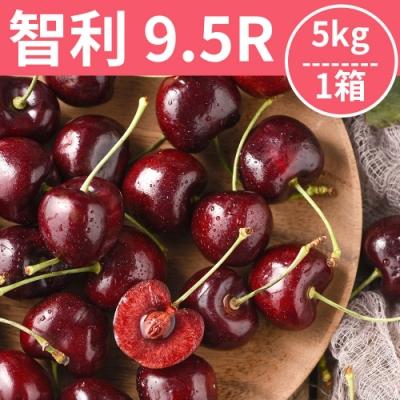 [甜露露]智利櫻桃9.5R 5kg(28mm)