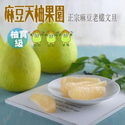 麻豆李老師天柚果園 柚寶級文旦5斤裝(8-11個)