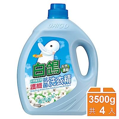 白鴿 天然濃縮護纖抗菌洗衣精-天然綿花籽3500gx4入/箱