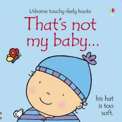 That s Not My Baby:Boy 那不是我的小男孩觸摸書