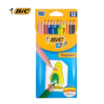 BIC 12色色鉛筆