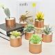 【Meric Garden】北歐ins風仿真多肉綠植物鐵罐小盆栽DIY套裝組(仙人顆) product thumbnail 1