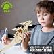 Playful Toys 頑玩具 木質恐龍立體拼圖 (DIY模型) product thumbnail 1