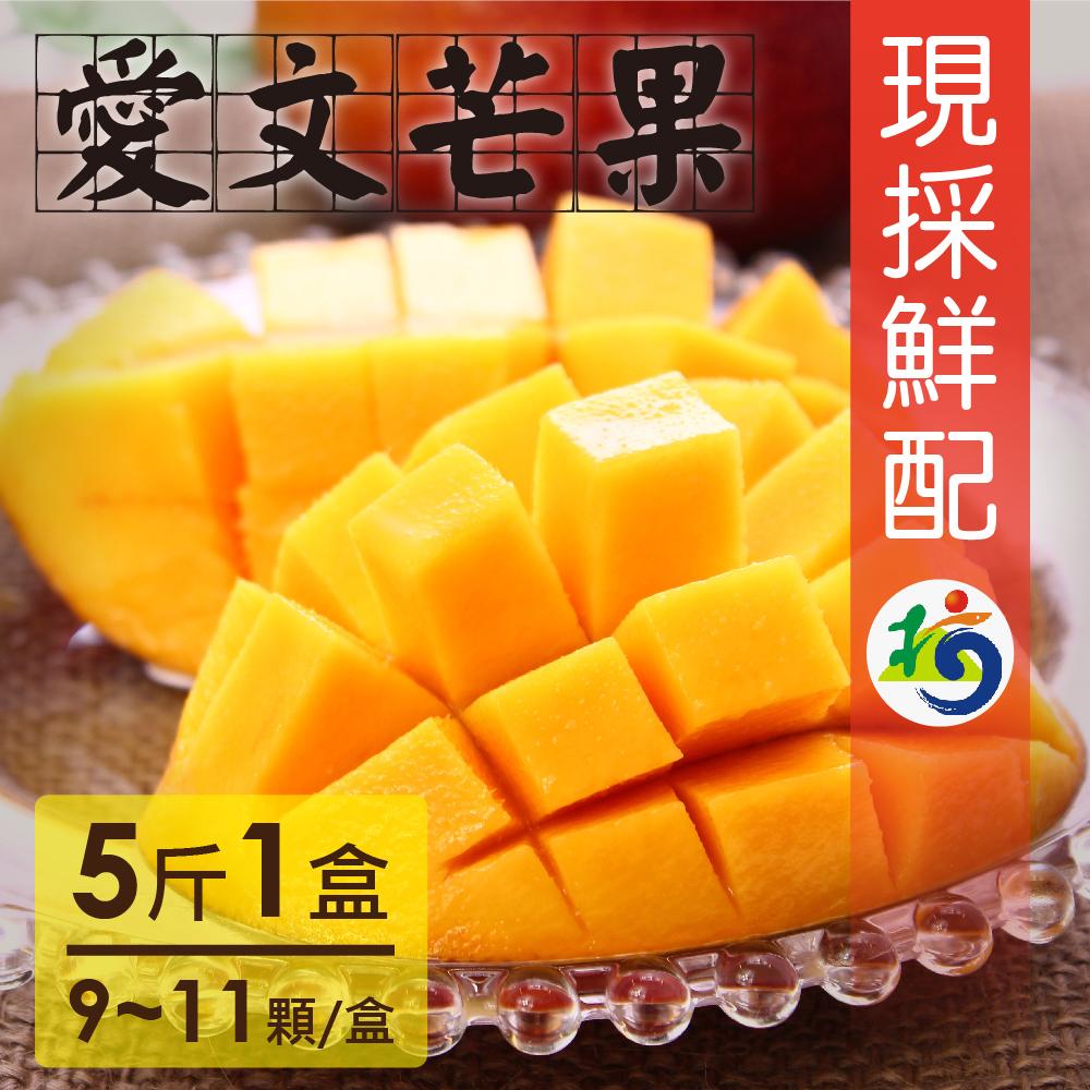 家購網嚴選 愛文芒果 5斤/盒(9~11顆/盒) 枋山果樹36班