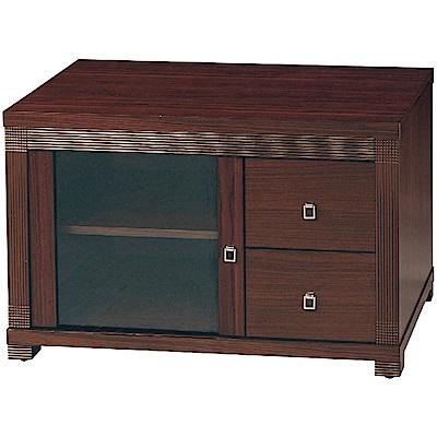 綠活居 波卡時尚3尺美型電視櫃/視聽櫃-90x54x57cm免組