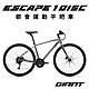 GIANT ESCAPE 1 DISC都會運動健身車(2022年式) product thumbnail 1