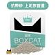 國際貓家 BOXCAT綠標 強效除臭礦球貓砂(13L) product thumbnail 2