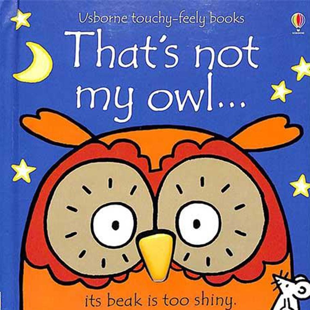 That's Not My Owl 那不是我的貓頭鷹觸摸書
