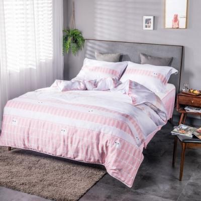 夢工場貓的夢想40支紗萊賽爾天絲四件式床罩兩用被-加大