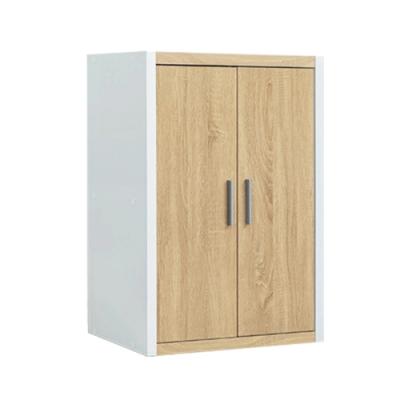 【綠活居】丹麥   現代2.1尺二門四格收納櫃(二色可選)-62x29x78cm免組