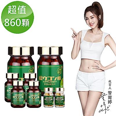 紅薑黃先生-京都版 860顆組(200顆/瓶 x2+100顆X4+30顆/瓶 x2)