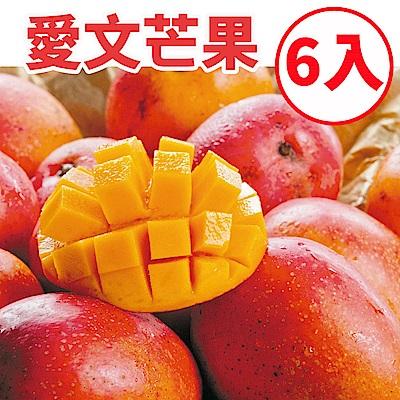[甜露露]愛文芒果L 6入禮盒(3.7斤)