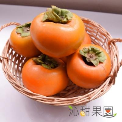 沁甜果園SSN‧高山甜柿7A禮盒(6粒裝)